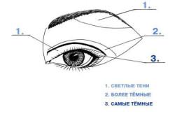 Схема макияжа глаз для начинающих