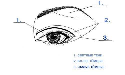 схема нанесения макияжа