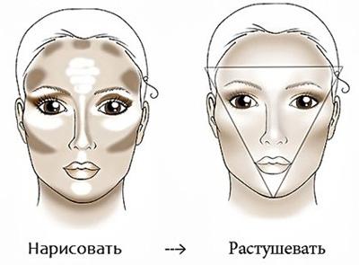 Схема для макияжа лица