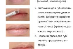 Макияж на каждый день для губ