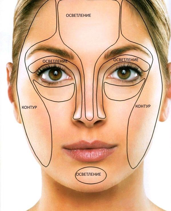 Схема лица для нанесения макияжа 68