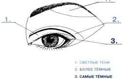Визуальное увеличение глаза с помощью макияжа